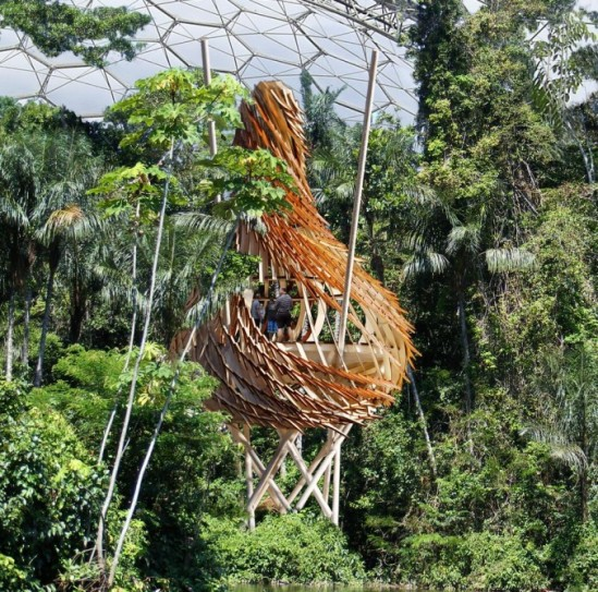 UK architectural firm Blue Forest has revealed its plans to build a large nest-like treehouse within the Eden Project's Humid Tropics Biome (image: courtesy gizmag)