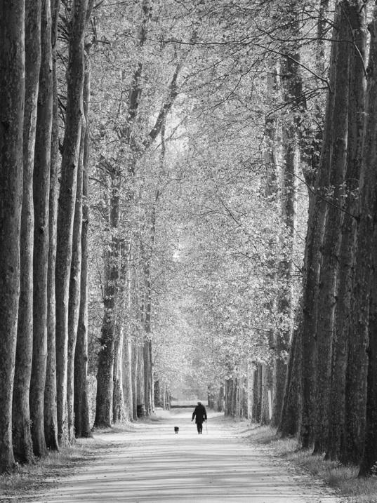 strolling in versailles (image: thomas peck; courtesy photobotos.com)